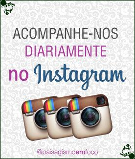 Banner Instagram - Lateral