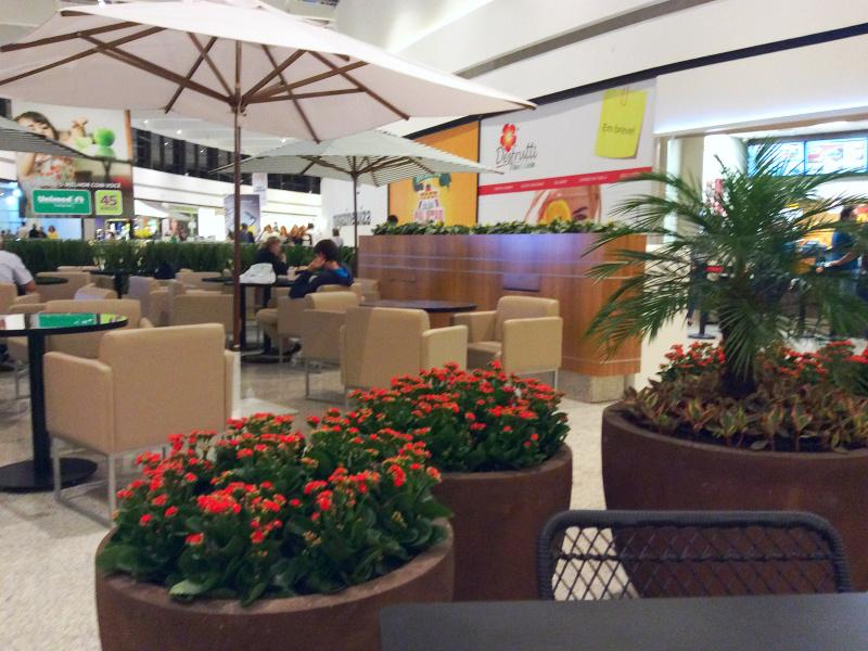 Kalanchoes conquistam jardins dos shopping centers e centros comerciais
