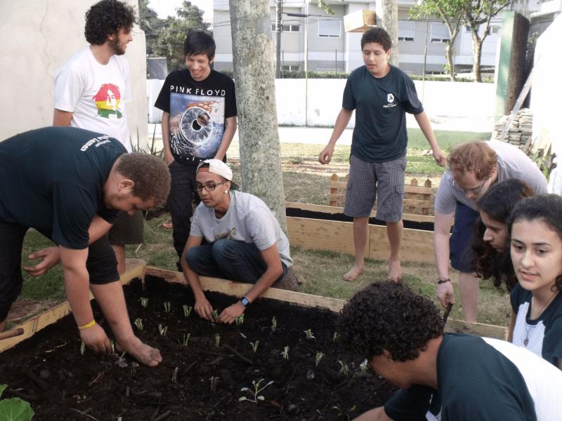 Projeto Horta Escola transforma terrenos baldios em sustento saudável para comunidade