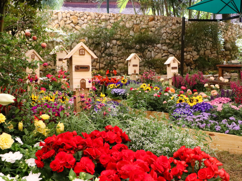 Expoflora utiliza mais de 200 mil vasos de flores na exposição e nos jardins para receber visitantes