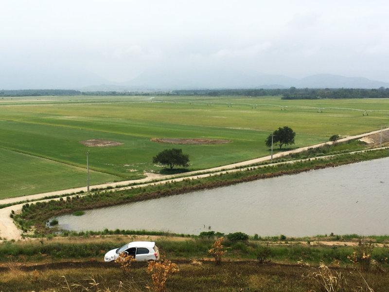 Green Grass investiu em um moderníssimo sistema de irrigação para sua unidade de produção no Rio de Janeiro