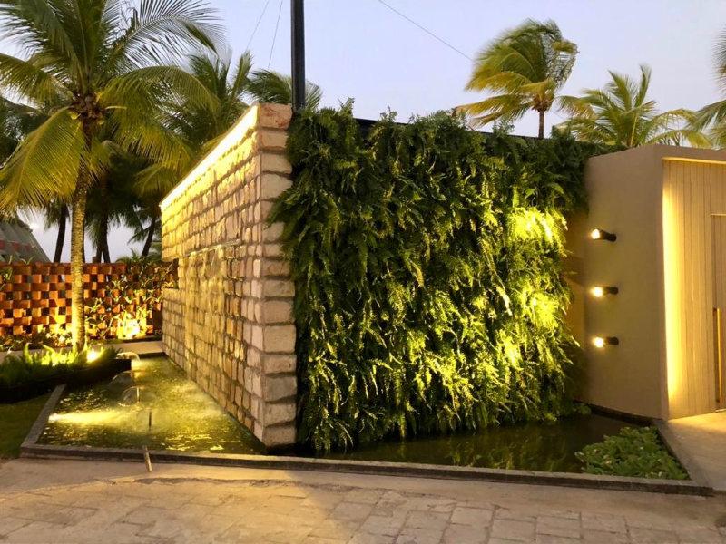 Aos profissionais que trabalham com a construção e paisagismo de jardins verticais