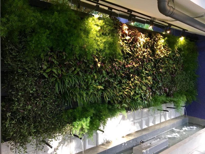 A GardenWall jardins verticais tem investido e participado de diversas exposições e feiras