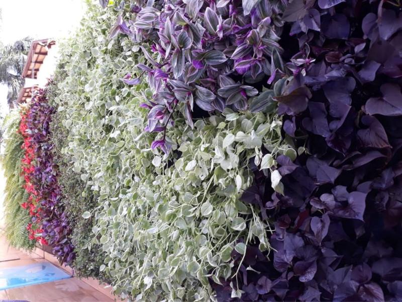 A GardenWall jardins verticais está levando seus produtos para todos os estados do Brasil
