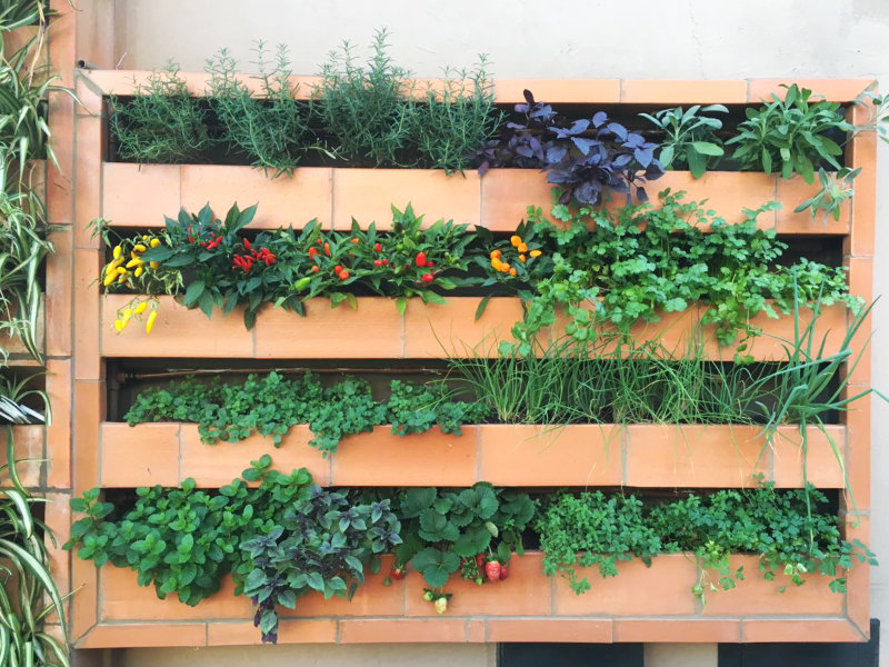 Garden Wall aposta no urbanismo verde e apoia o 4º Congresso Internacional de Arquitetura Paisagística da ABAP