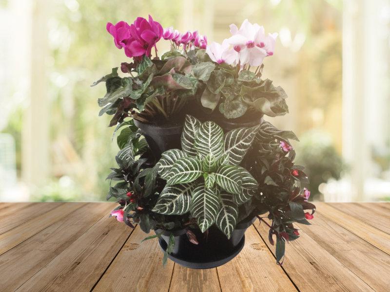 Vasos empilháveis são ideais para todos os espaços