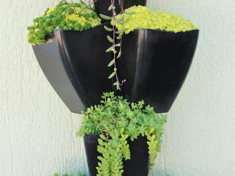 Inovação em jardins verticais transforma ambientes e traz o verde para perto!