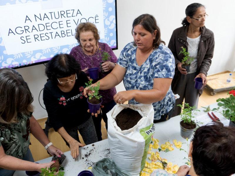 Os Jardins da Ana apresenta oficina de jardinagem com Rosas no Sesc 24 de Maio